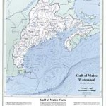 Weekly Notes ~ Gulf of Maine Watershed